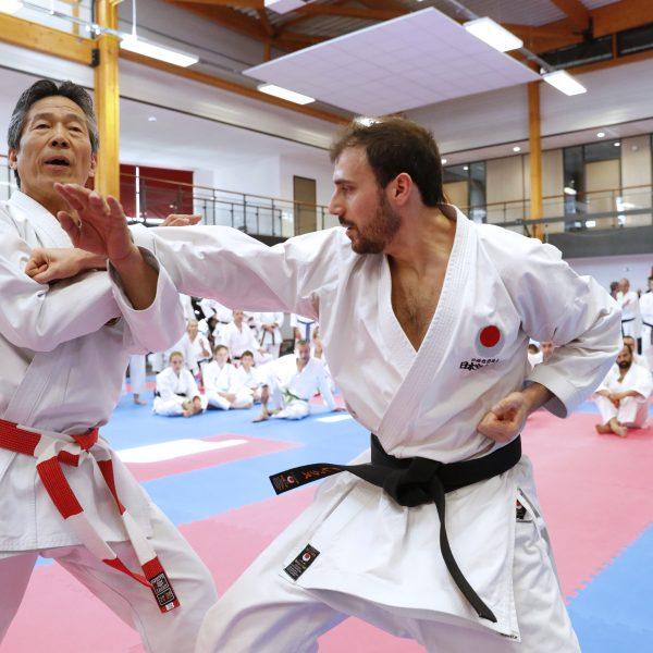 Bunkaï avec Tsutomu Kamohara