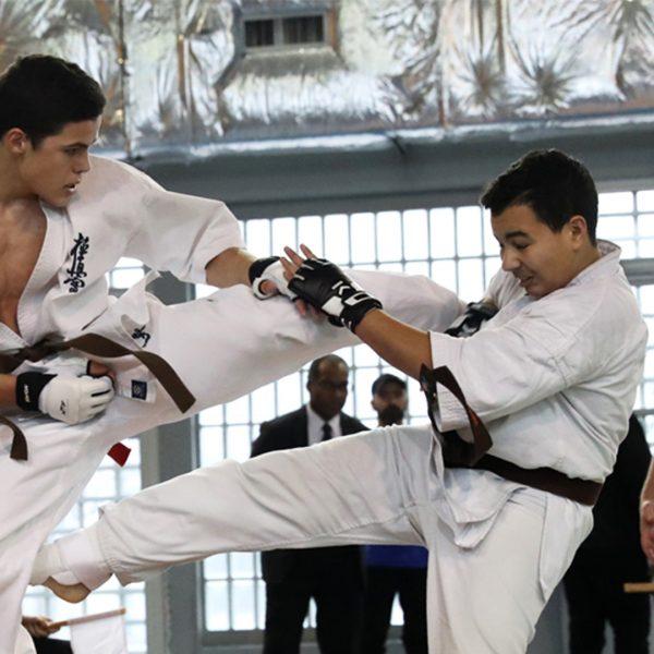 Gros plan sur le Kyokushinkai
