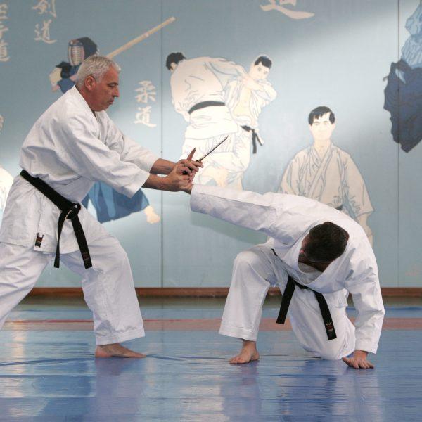 Tai-jitsu, l'école des fondamentaux